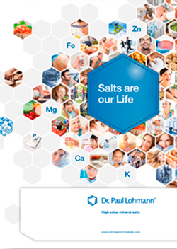 Salts Make Up Our Life PDF Cover